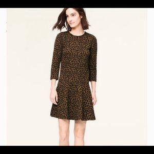 Loft animal print dress sz xs in black and brown
